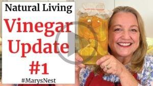 Homemade Citrus Scented Vinegar Update #1 Video