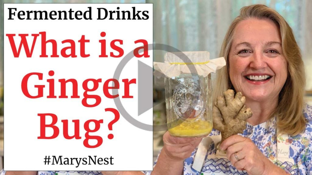 How to Make a Ginger Bug for Making Probiotic Rich Fermented Drinks Video