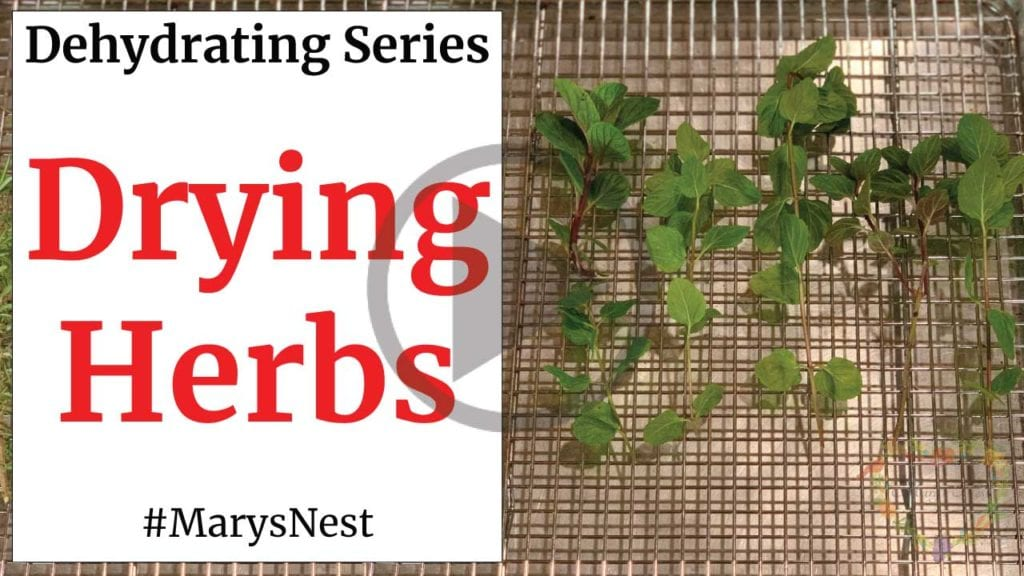 Dehydrating Series Herbs video
