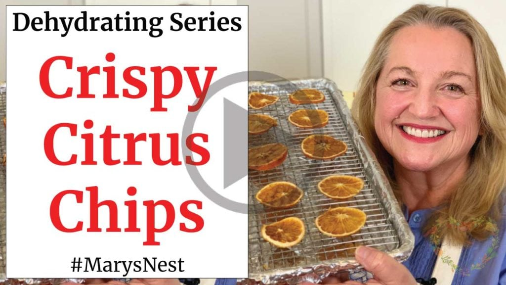How to Make Crispy Citrus Chips - FOOD DEHYDRATING 101 Video
