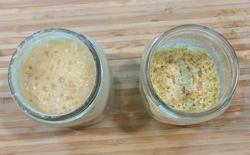 Salt Rising Bread cornmeal and potato starters